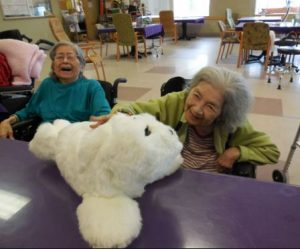 Robotic seal for use in dementia care